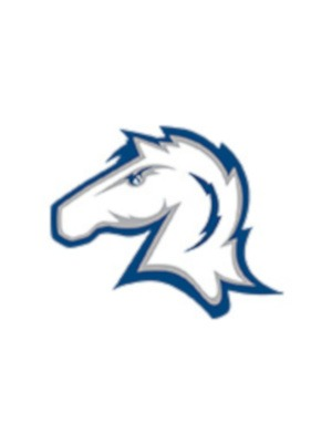 Charger Team Logo